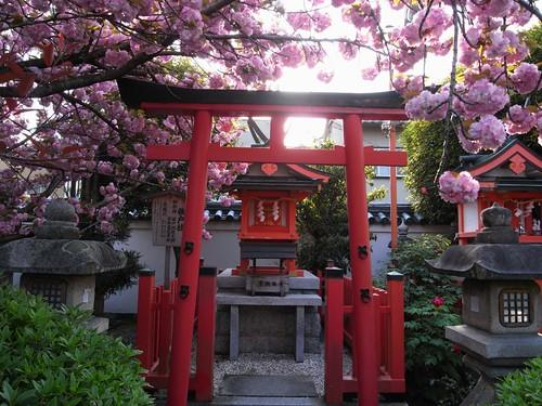 御霊神社(奈良町)-10