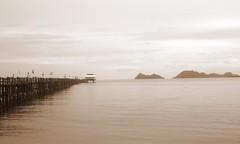 El muelle de Chumphon (Cyberian8) Tags: beach water ferry canon favoriten 350d agua wasser barco ship air favorites tailandia playa h2o favourites favoritas su favourite thailandia favorita vatten aigua platja  favorit favoriter vaixell preferida   leau chumpon  favoris     vode   sk kegemaran    favoritescyberian8 gunstelinge