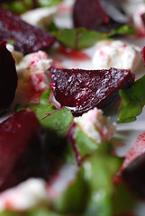Roasted Baby Beetroot and Goats Cheese Salad© by Haalo