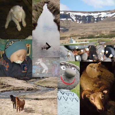 Iceland Week1