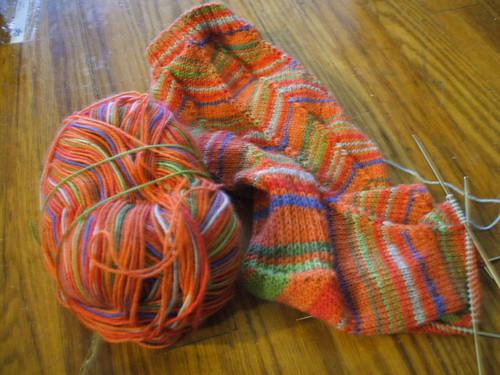 Socks for Seely
