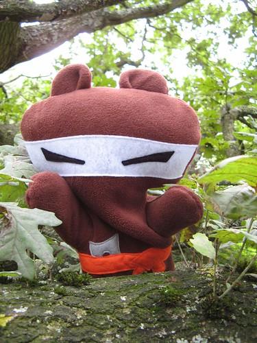 bear-ninja-surprise