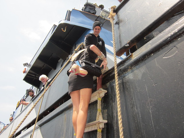 Confessions of an Eco Terrorist, Jennifer Lexon, Sea Shepherd, Steve Erwin, Cannes