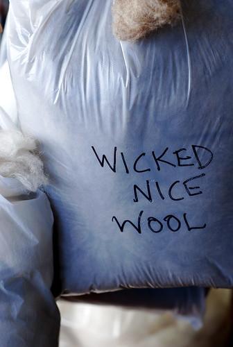 wicked nice wool