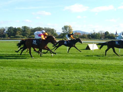 Iffezheim Horse Races
