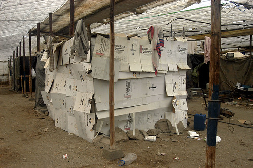 Una choza de cartón en un invernadero