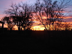 Dawn in Uvalde County (Texas to Mexico) Tags: ranch morning nature beauty rural sunrise outdoors dawn quiet texas country southtexas knippa anawesomeshot uvaldecounty onlythebestare