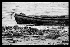 Mare Nostrum #2 - O Sopram Ventos Adversos (RiCArdO JorGe FidALGo) Tags: bw lake portugal water gua lago boat barco sony chuva pb luso dsch2 cameradeourobrasil fidalgo72 inundaes ricardofidalgo ricardofidalgoakafidalgo72