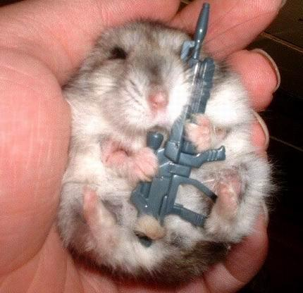 Bad Ass Hamster