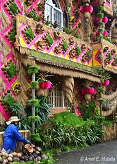 Pahiyas Festival 2009 (Lenareh) Tags: house festival feast fiesta coconut philippines religion decoration ornament pahiyas tradition quezon palay lucban kiping sanisidrolabrador pinoykodakero lenareh coconutfarmer farmharvest pahiysfestival coconuthusker pcp2011 pcp2011l