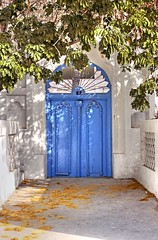 The House of Many (Muadh N M) Tags: door family blue house tree home bahrain manama alabbasi mustafabinabdullatif eshaqalkhan