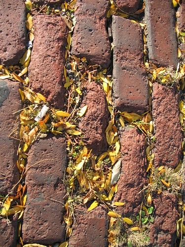 Brick and Leaves