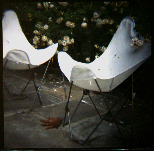 butterfly chair with roses