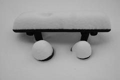 fresh snow (m8roberto) Tags: ume umea ricohgrd