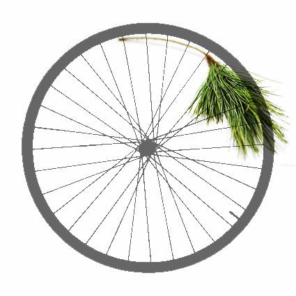 xmas wheel