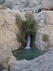 Nahal David, Israel (En Gedi)