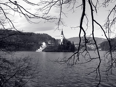 Natural framing (Rich007) Tags: blackandwhite bw mountain lake mountains alps tree church water monochrome architecture island blackwhite europe branch slovenia shore bled bandw easterneurope centraleurope lakebled julianalps kranj cerkevmarijinegavnebovzetja pilgrimagechurchoftheassumptionofmary
