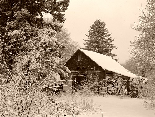 old barn - sepia