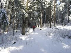 Abfahrt zum kleinen Feldberg (karsten13) Tags: feldberg 03022008