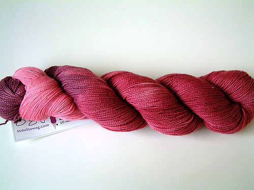 Scout's Swag Superwash Merino- Raspberry Sorbet