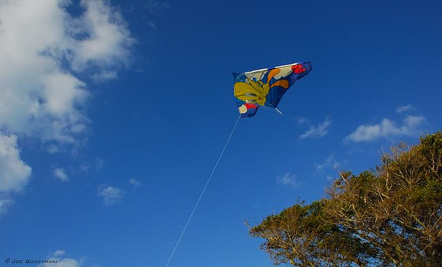 Kite Day!