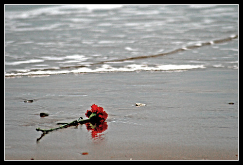 corazon roto poemas. corazon roto poemas. poemas de