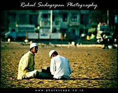 The Tutor (Rahul Sadagopan) Tags: india man men beach nature marina sand nikon bokeh muslim islam madras d70s study shore grains chennai teach learn guru southindia tutor bayofbengal dsc1610 rahulsadagopan