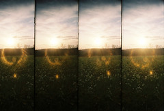 The field. (THEMACGIRL*) Tags: film field spring lomography supersampler ourkentucky