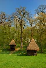 Sheds in the sun (Paul Băilă) Tags: tree saturated nikon quality shed bluesky best romania polarizer 2008 sibiu greengrass 18135 d80