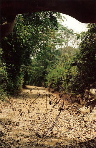 Osun temple gates