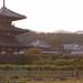 法起寺:R0011874
