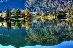 Il bagno della papera (giannipiras555) Tags: lago idro riflessi alberi collina ponte autunno papera landscape panorama acqua nikon