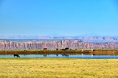 Castle Valley, Utah, USA (Maria Kotsonia) Tags: cow lake moab utah usa castlevalley roadtrip sandstone valley nikon d3300 nikkor ngc