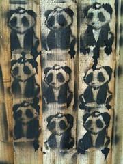 Panda Army (Trevor Coultart) Tags: graffiti stencil panda stevenage