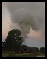 Antilhue (Fepasas en la Araucania) Tags: tren vapor antilhue museoferroviariopabloneruda