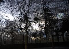 Salon d`Hiver VII (offroadsound) Tags: winter reflection evening hiver reflejo invierno reflexion spiegelung bailando hildesheim bailar galgenberg tanzhaus salondhiver salondeladance