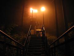 stairs, fog 2 (nbams) Tags: fog night stairs escarpment