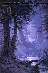Neldoreth Forest