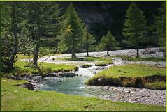 Meandering mountain torrent (rotraud_71) Tags: trees sun water forest geotagged austria meadow torrent salzburgerland kolmsaigurn nationalparkhohetauern mywinners raurisertal