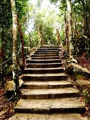 Trekking by jslwong