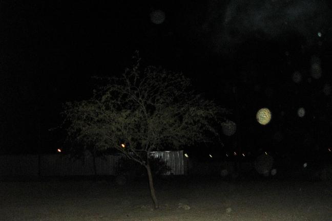 halloween 012brcontres