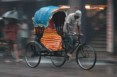 Race with the pace (picazam) Tags: road rain paddle transportation rickshaw job bangladesh carry bir azam threewheelers picazam birazam