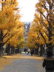 Quy chế tuyển sinh du học Nhật Bản của Việt-SSE