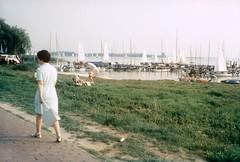 Dümmersee (Blue   Petunia) Tags: boote baden segeln niedersachsen damme hunte dümmer diepholz dümmersee