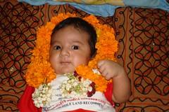 DSC00373 (surender_kaushal) Tags: gulshan