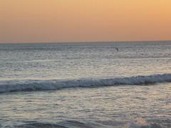 Mar tranquilo - Monte Hermoso (leoespeche) Tags: sol mar playa arena monte hermoso puesta ignacio montehermoso