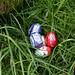 Påskeharen afleverede et par æg i haven!