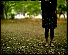 the day after tomorrow... (TommyOshima) Tags: graflex clarice fujicolor tessar f27 carlzeissjena 165mm pn160nc naniwacolorkits anniversaryspeedgraphics
