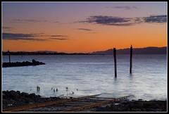 Underwater Rail (Chris Gin) Tags: sunset sky sun bird clouds underwater seagull rail wharf onehunga heheheh ndfilter gndfilter supershot neutraldensity graduatedfilter mywinners anawesomeshot