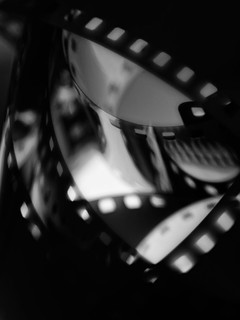 Film noir | Macro Monday